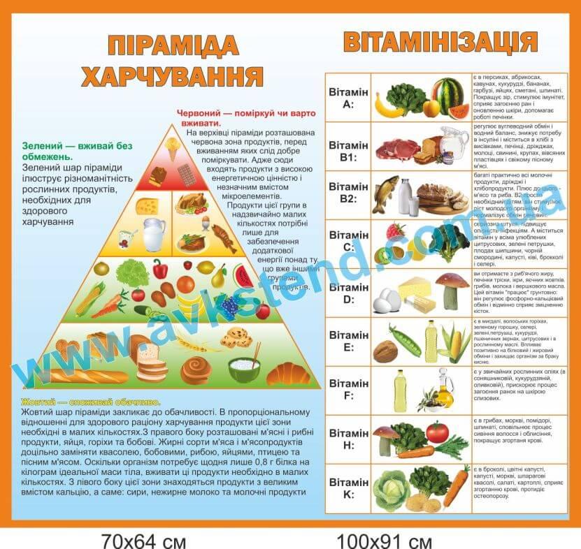 стенди для шкільної їдальні купити, стенди для шкільної їдальні замовити, стенды для школьной столовой купить, стенды для школьной столовой заказать, піраміда харчування, пирамида питания