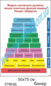 Модель поетапного розвитку вищих психічних функцій людини Лазаро і Берруззо
